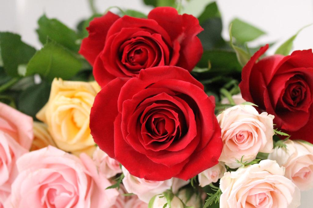 真っ赤な薔薇の花束