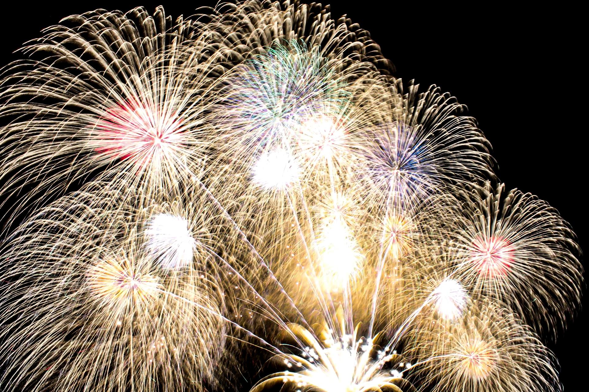 花火の画像・写真 フリー素材一覧|商用利用可能