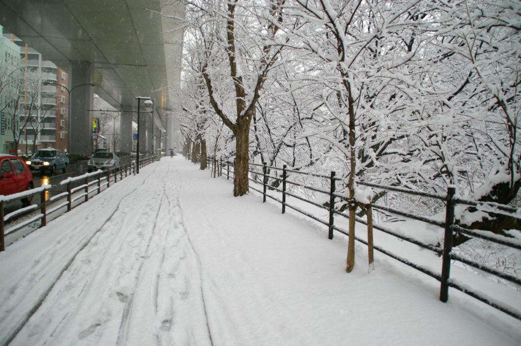 高架下の道路と脇の歩道に積もる雪