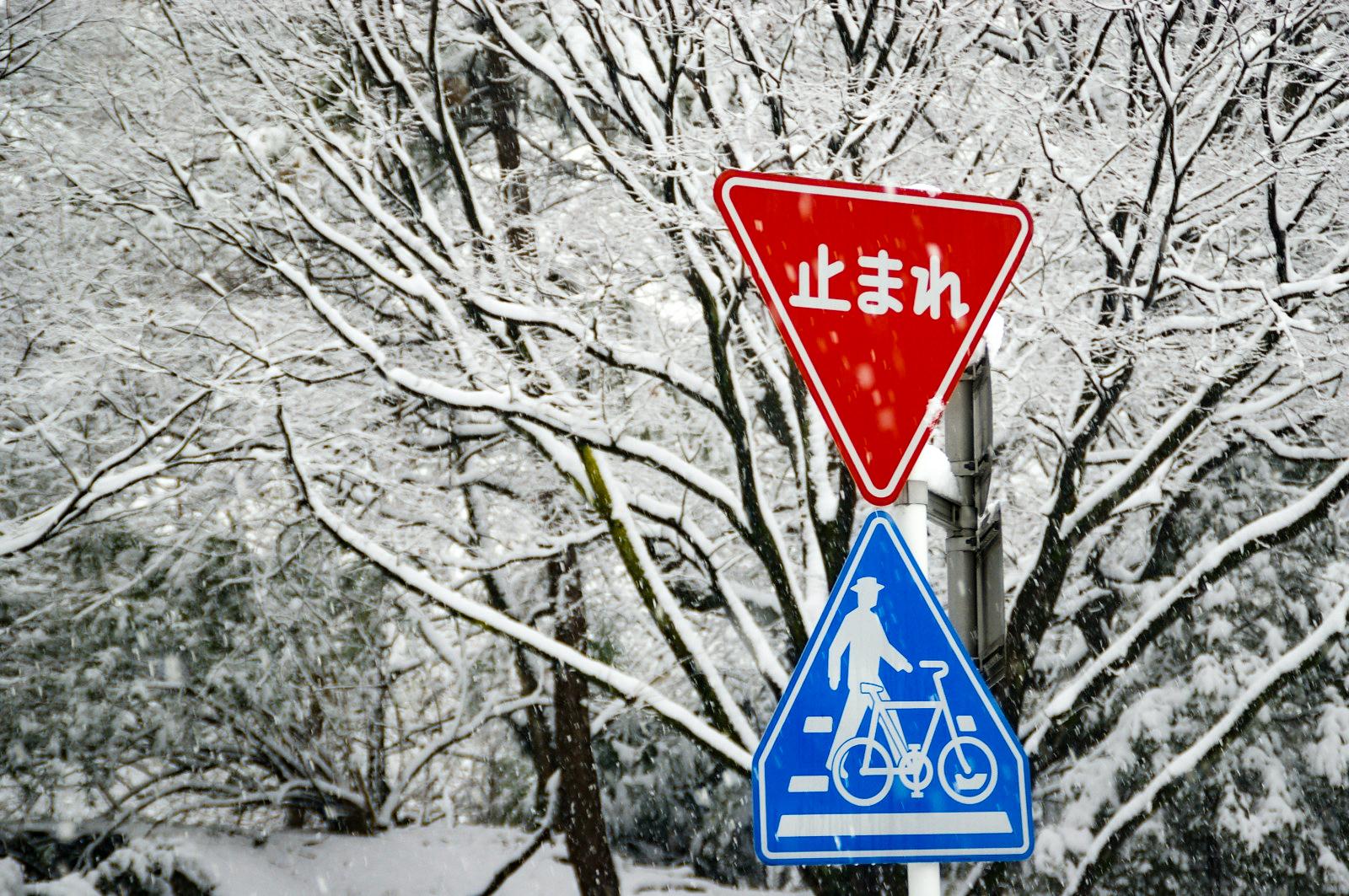 雪景色 止まれの標識