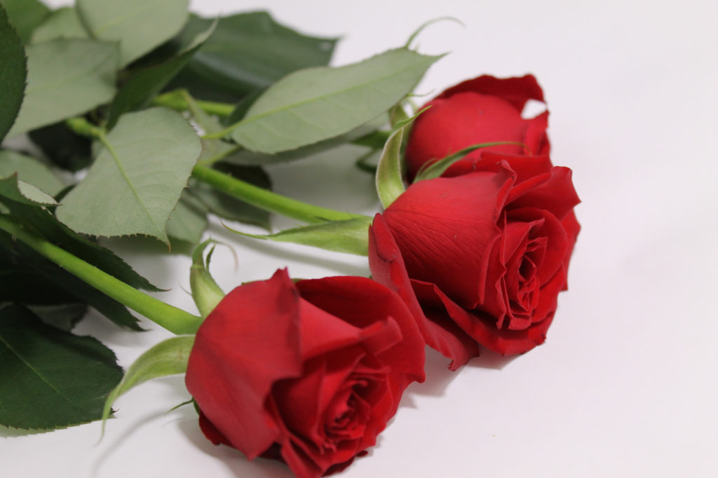 花束として赤い薔薇3本を用意