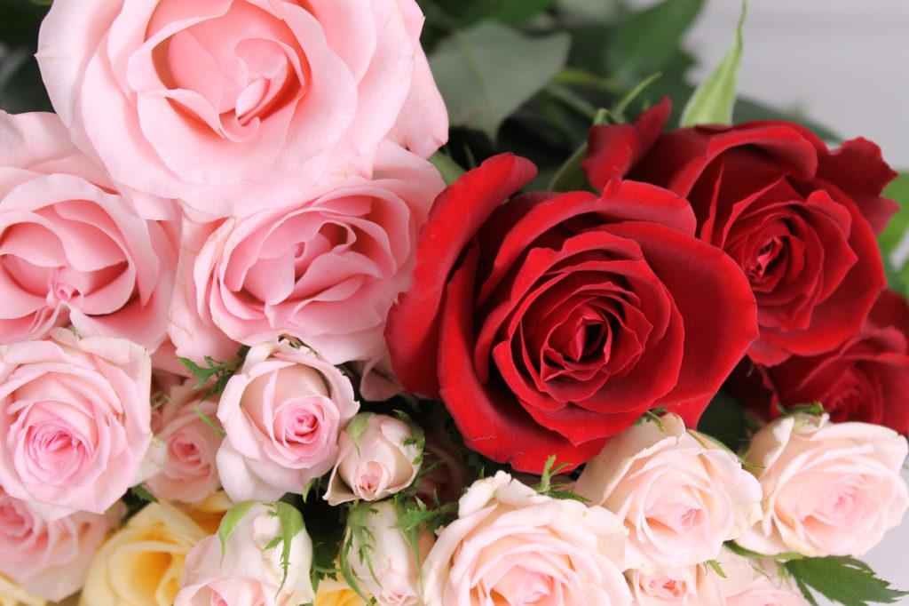 ピンクと赤の薔薇の花束