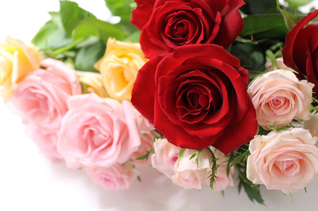 気持ちが伝わる薔薇の花束
