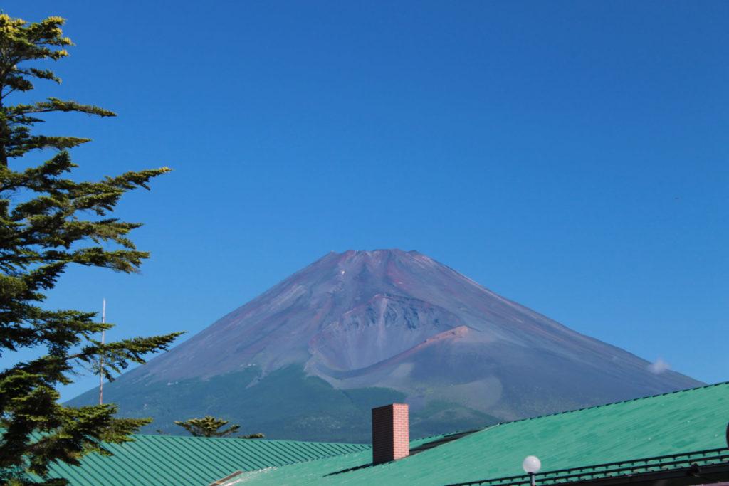 富士山:富士サファリパーク内から撮影