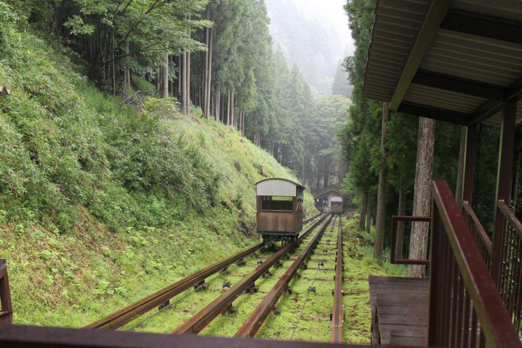 霧の中を走るトロッコ電車