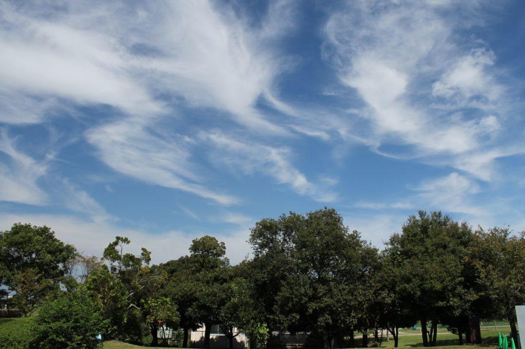 秋の青空とすじ雲