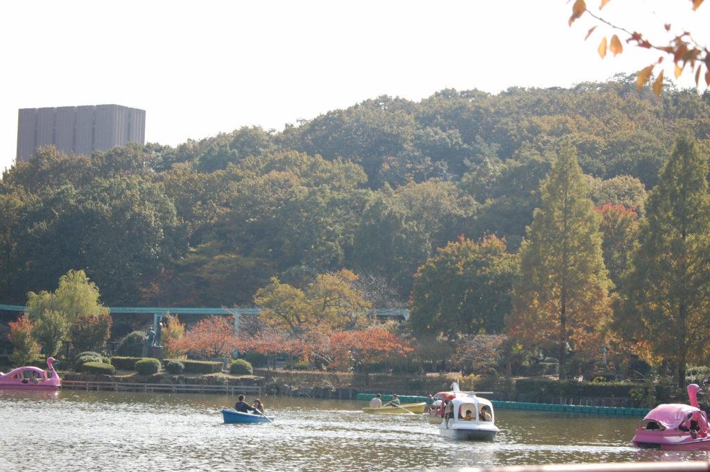東山動植物園の池