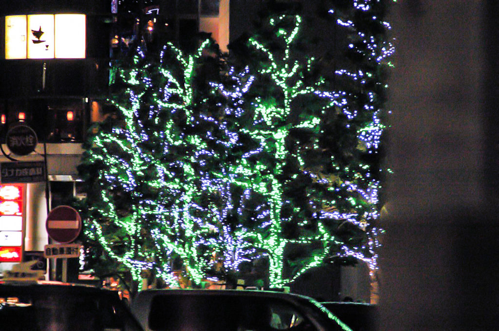 木の幹を緑で表したイルミネーション