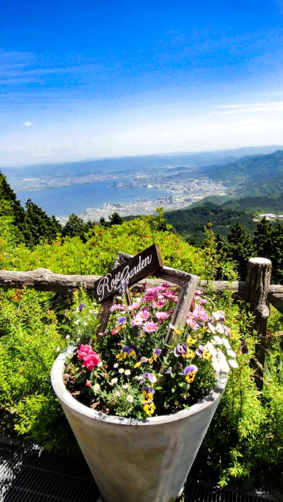 寄せ植えの背景に琵琶湖
