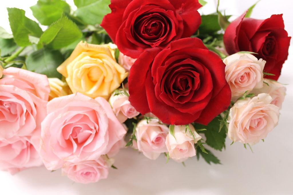 気持ちを伝える薔薇の花束2