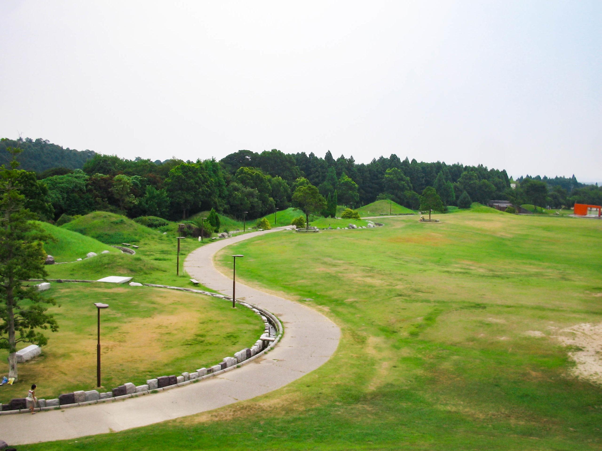 丘から見た公園の写真