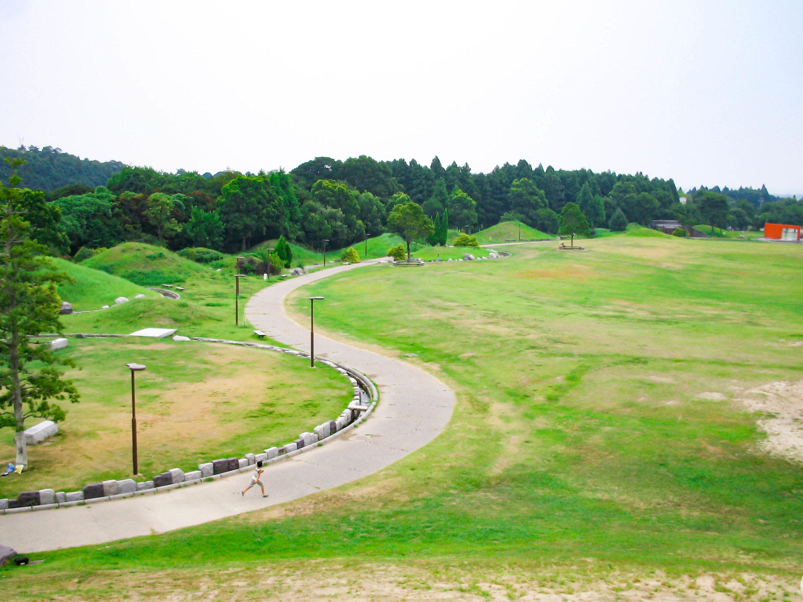 丘から見下ろした公園の写真