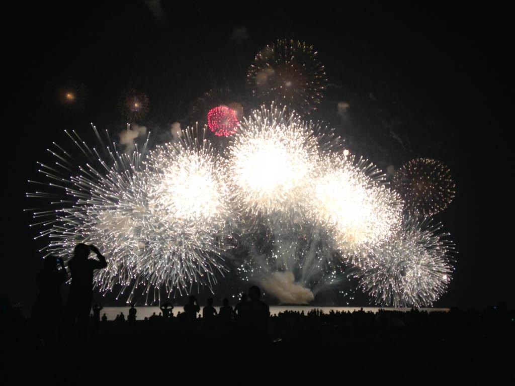 打ち上げ花火クライマックス【夏の思い出】の写真