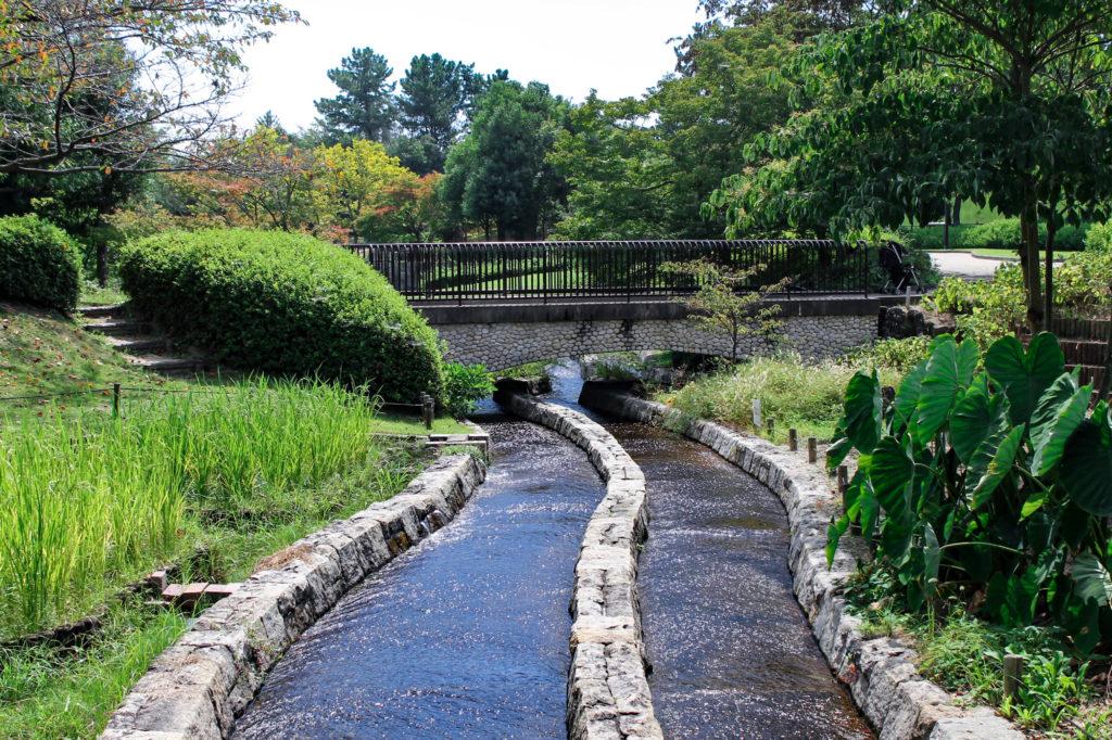 木曽三川公園内の小川の写真