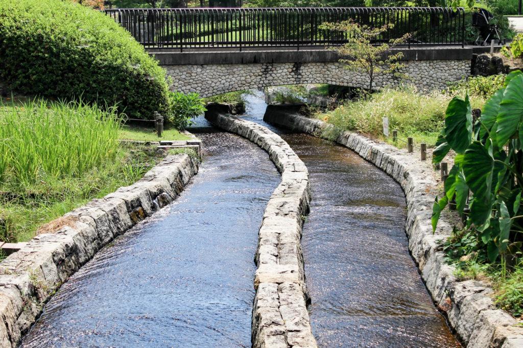 木曽三川公園内の小川